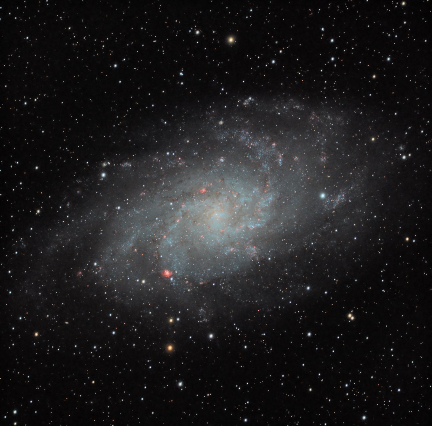 M33 All Data from DSS.jpg